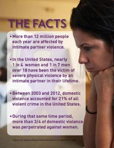 DV fact sheet 2014 web